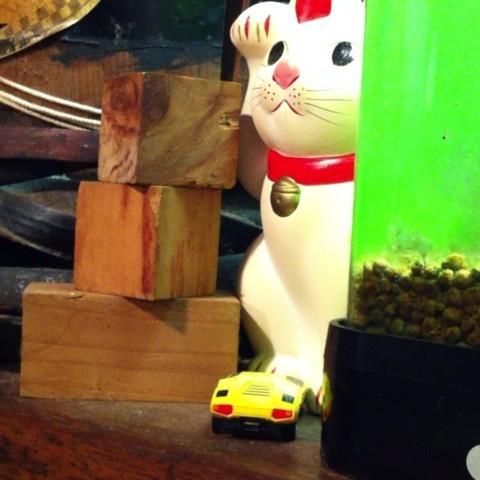 kishidaya-cat